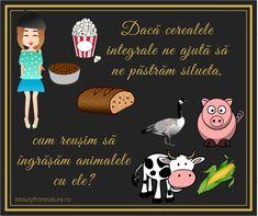 Puterea publicității: Toți știm că animalele se îngrașă cu cereale. Ficatul gâștelor îndopate cu porumb este ficat gras non-alcoolic. Noi ne lăsăm prostiți și cumpărăm conștiincioși furaje frumos ambalate, pline de zahăr și aditivi. #nutritie #sanatate #LCHF #keto Keto, Comics, Poster, Alcohol, Comic Book, Posters, Comic Books, Comic, Comic Strips