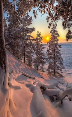 New winter landscape photos god 52 Ideas Winter Photography, Landscape Photography, Nature Photography, Landscape Photos, Photography Tips, Winter Magic, Winter Scenery, Winter Sunset, Snow Scenes