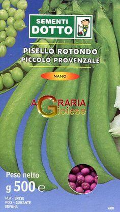 PISELLO GR. 500 NANO PICCOLO PROVENZALE https://www.chiaradecaria.it/it/semi-di-legumi/14497-pisello-gr-500-nano-piccolo-provenzale-8006555056518.html