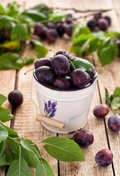 Good food from nature makes for a good life – naturally. (Plums)