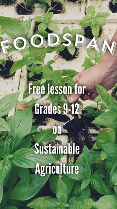FoodSpan is a free curriculum about sustainability & the food we eat. Its standards-aligned lessons geared towards Grades 9-12 empower students to make healthy & responsible food choices. FoodSpan's 100+ activities tackle real-world issues like climate change, the environmental impacts of agriculture & much more!
