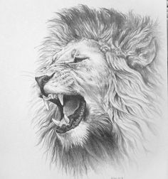 Tattoos, lion tattoos for men, tatou animal, lion design, lion tattoo desig Bull Tattoos, Animal Tattoos, Body Art Tattoos, Horse Tattoos, Wing Tattoos, Sleeve Tattoos, Lion Tattoo Design, Lion Design, Tattoo Designs