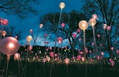 "Beautiful close up of ""Field of Light"" at LIGHT: Bruce Munro at Cheekwood in Nashville"
