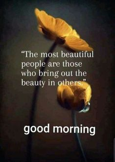 Inspirational Good Morning Messages, Funny Good Morning Messages, Happy Good Morning Quotes, Good Morning Msg, Good Morning Breakfast, Good Morning Beautiful Quotes, Good Day Quotes, Morning Greetings Quotes, Good Morning Flowers