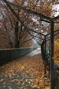 Bridge for Bagno Pubblico | Aurelio Galfetti | Flickr - Photo Sharing!