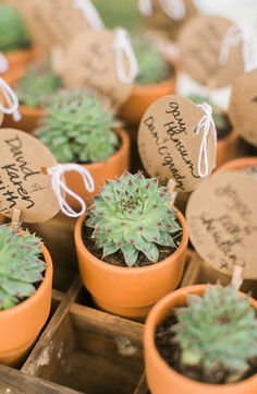 Succulent wedding favors @weddingchicks