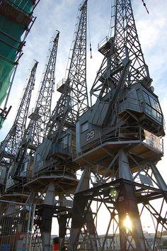 cranes | Giles Booth | Flickr