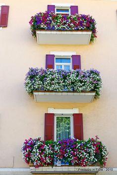 Predazzo in fiore 2010, i vincitori e le foto dei balconi fioriti - PredazzoBlog - PredazzoBlog