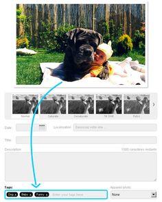 Take it to the top : ¿Quieres más visitas, más flashes, más FF?    Añade etiquetas a tus fotos para ser clasificar.    Foto divertida de un perro y un bebé : añade 'perro', 'bebé' y 'divertido'.    Foto con tus amigos en la playa: Add 'amigos' y 'playa'    ---    Você quer mais vistas, mais flashes, mais FF ?    Adicione tags às suas fotos para ser classificar.    Foto engraçada de um
