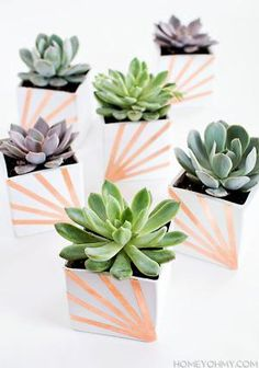 Showcase Your Plants With These 14 DIY Pots: DIY White And Copper Succulent Planters