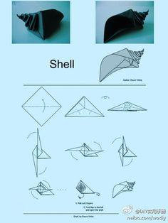 Conch origami