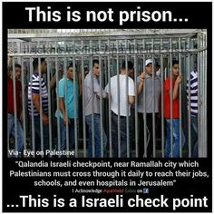 Apartheid Israel - A war against humanity! Remember the Palestinians in your prayers Apartheid, United We Stand, Oppression, Knowledge, Politics, Wisdom, Wide Awake, Quotes, High Level