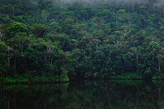 Foto de Ana Paula de Souza para o Workshop Fotografia na Floresta no Legado das Águas – Reserva Votorantim com Luciano Candisani