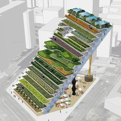 Vertical Farming Image