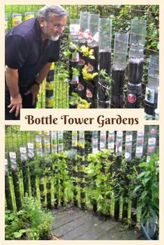 Bottle Tower Gardens - This guy didn't have much space for a garden, so he got creative!