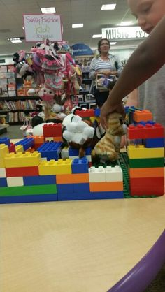 Day 5 at the bookstore building a house with Legos