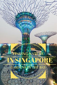 Did you know Singapore has many parks, gardens and nature reserves? Follow us as we explore nature in Singapore, starting from the amazing Gardens by the Bay!