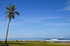 Paradise in North Sumatra.  #Beach #PalmTree