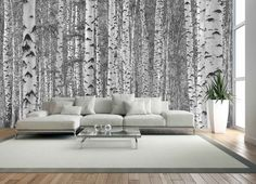 Wallpaper Accent Wall - This black and white tree mural will sweep you away with its majestic birch tree. Tree Wallpaper Bedroom, Birch Tree Wallpaper, Forest Wallpaper, Wall Wallpaper, Trendy Wallpaper, Black And White Tree, Black And White Wallpaper, Birch Tree Mural, Poster Mural