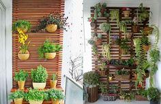 Veja como espaços reduzidos, até em apartamentos podem abrigar pequenos jardins graciosos, muito bem cuidados só seguindo algumas dicas simples.