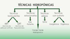 Técnicas hidropónicas : HYDROENVIRONMENT: HIDROPONIA