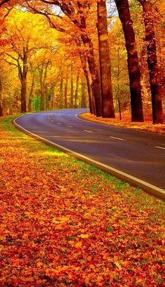 Hösten på väg...