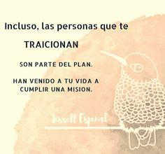 Todo es parte del plan perfecto. No lo dudes. #propósito #aceptación #confianza #trust #yasíes #namastê #vamoaetooo  #juevespositivo