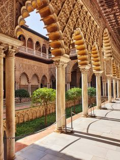 Day and Night at the Alcázar of Seville Alcazar Seville, Visit Barcelona, Andalusia Spain, Spanish Royal Family, Dream Trips, Patio Interior, Royal Residence, Most Beautiful Gardens, Different Plants