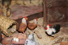 Rooster, Bird, Fairy Garden Furniture, Chicken Coops, Palm Trees, Ducks, Birth, Miniatures, Gardens