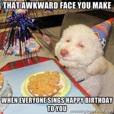 fbffb6e72b54bf51a9423ef3d3f3a172 happy birthday memes birthday fun happy birthday memes funny happy birthday meme images,Singing Happy Birthday Meme