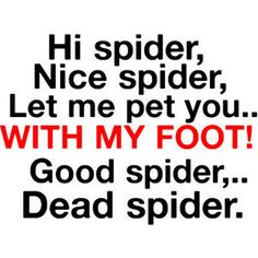 funny spider pictures with quotes | Funny Quotes. - Polyvore on imgfave
