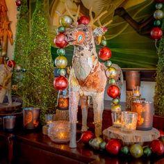 It's starting to look like #Christmas with our uber festive reindeer! #thankful #mossmountainfarm #holiday #cheer #sharethebounty #ShopPAllen #joy#comeseeus