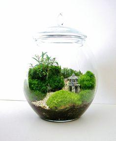 Asian Landscape Moss Terrarium with Miniature Path by DoodleBirdie, $118.00