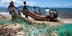 Pêcheur d'Images à Madagascar - II - BLOG Philip Plisson