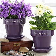 40 Ideas to Dress Up Terra Cotta Flower Pots -Painted & Personalized Flower Pot Terracotta Flower Pots, Painted Flower Pots, Ceramic Flower Pots, Painted Pots, Flower Pot Crafts, Clay Pot Crafts, Diy Flowers, Purple Flowers, Pot Jardin