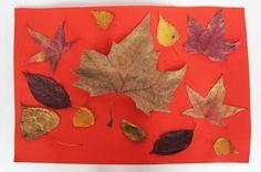 Blättercollage basteln | NetMoms.de