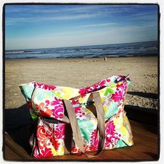 thirty one Spring at the beach