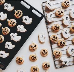 pumpkin and ghost cookies for a festive and delicious halloween treat Halloween Cookies, Halloween Treats, Fall Halloween, Halloween Biscuits, Halloween Party, Spooky Treats, Halloween Inspo, Happy Halloween, Fall Inspiration