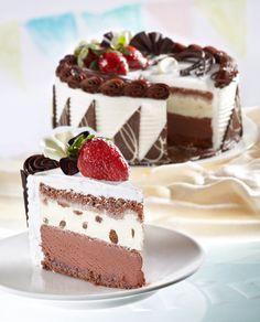 Campina Ice Cream Cake