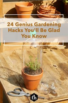 This collection of gardening and landscaping handy hints will give you effective new techniques to get the beautiful garden and backyard you've always wanted. Diy Herb Garden, Vertical Garden Diy, Lawn And Garden, Garden Pots, Garden Ideas, Vegetable Garden, Outdoor Plants, Outdoor Gardens, Outdoor Spaces