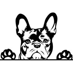 French Bulldog – Playful and Smart French Bulldog Art, French Bulldog Puppies, Bulldogs, Dog Silhouette, Stencil Art, Pet Puppy, Vinyl Decals, Dog Breeds, Cricut