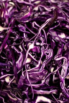 purple food photography with cabbage