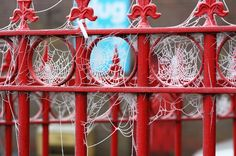 Frozen Webs Frozen cobwebs on the railings at Tower Brewery, Tadcaster