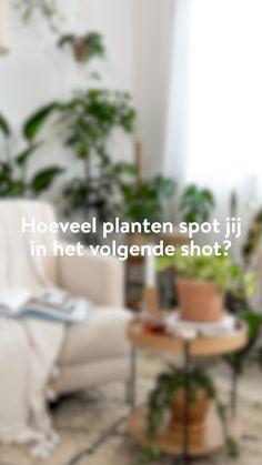 160 Planten Ideas In 2021 Home Home Decor Decor