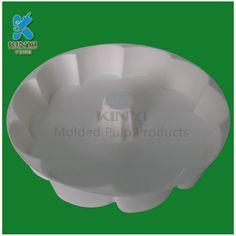 Biodegradable bagasse pulp wet hot-press process pulp molded