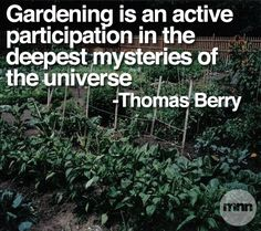 """""""Gardening is an active participation in the deepest mysteries of the universe."""" - Thomas Berry"""