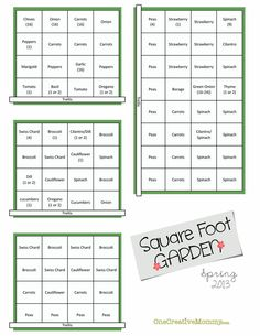 square foot gardening raised beds spring squares plants squares ...