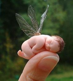 I always wanted to believe in fairies~