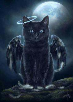 Angel cat art for our beloved black cats. Cat Klugh Art - Hi . - Angel cat art for our beloved black cats. White Kittens, Cats And Kittens, Cats 101, Black Cat Art, Norwegian Forest Cat, Sleepy Cat, Dark Fantasy Art, Cat Drawing, Baby Cats