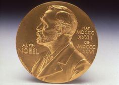 Image result for nobel prize medal